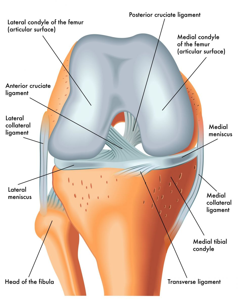 Knee Ligament Injuries Singapore | Tears in ACL, MCL & PCL